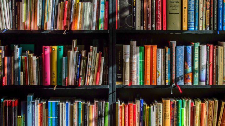 Grote streekboekenverkoop bij het Erfgoedcentrum Achterhoek en Liemers